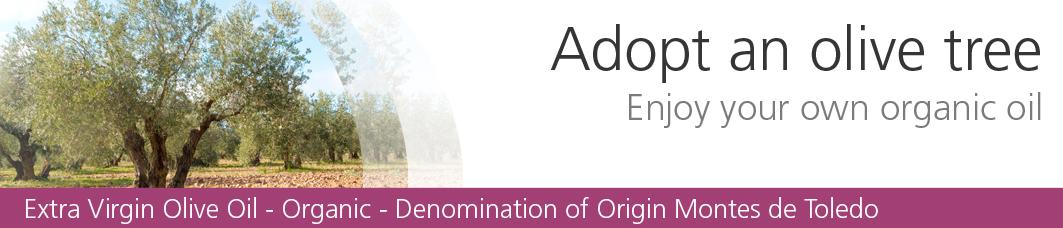 Spanish Organic Olive Oil - Adopt an olive tree